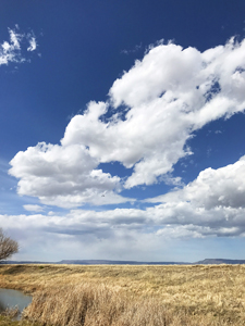 Hi Lo Country landscape at Eagle Tail near Raton, New Mexico