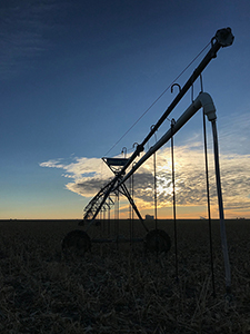 Irrigation silhouette, Kansas center-pivot irrigation