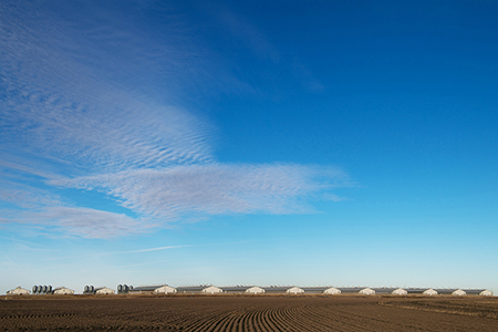 Huff & Puff Pork LLC, Kansas - panoramic landscape photo by Tim Keller