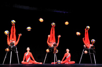 Balls - Golden Dragon Acrobats